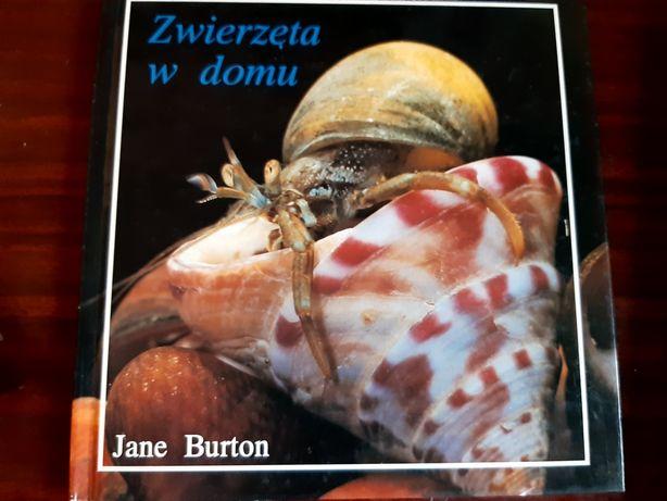 Книжки дитячі польською мовою