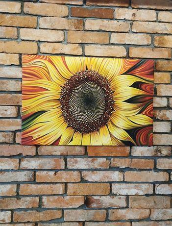 Obraz na płótnie Słonecznik 75x50cm - Premium