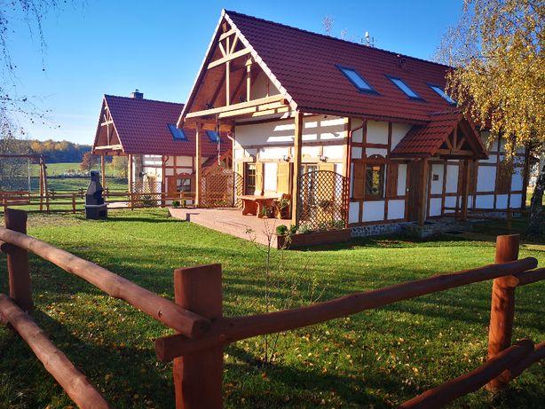 Domek nad jeziorem na Kaszubach. Grzyby