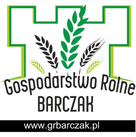 Kwalifikowany materiał siewny pszenica ozima Comandor C/1 kwalifikat