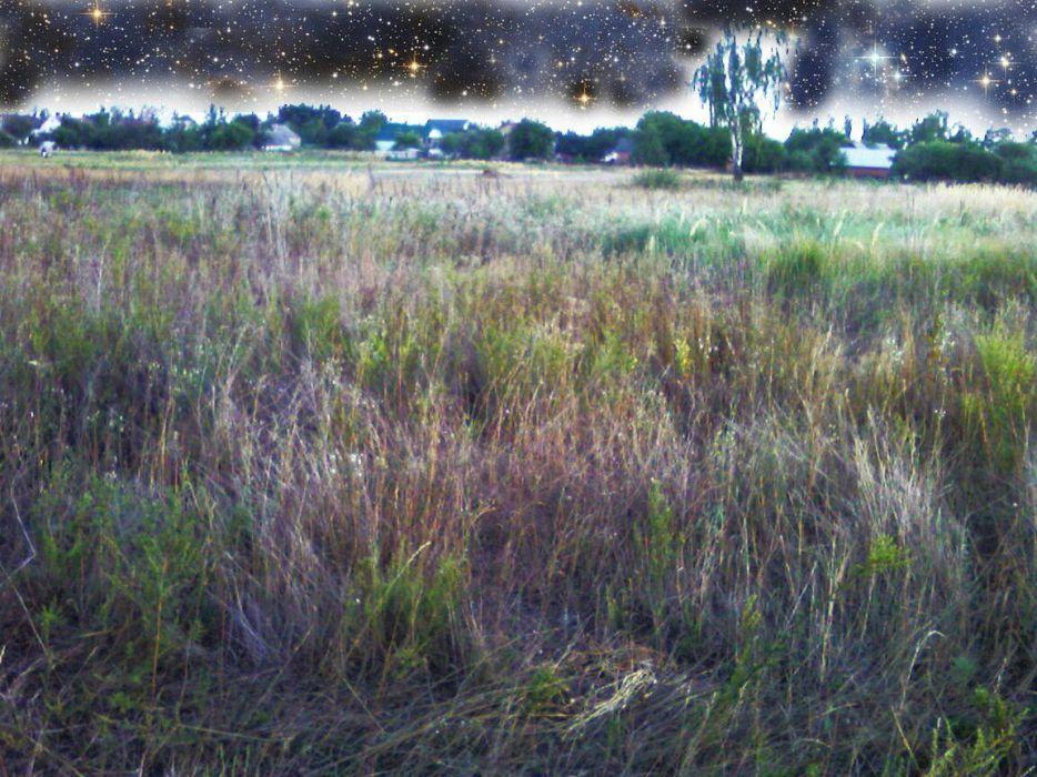 Земельный участок (ОСГ, 13соток) в Бородянском р-не. Озера - зображення 1