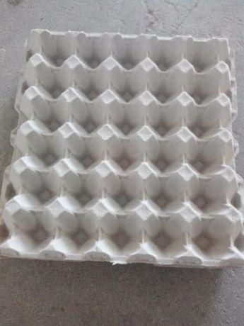 Cartões para ovos