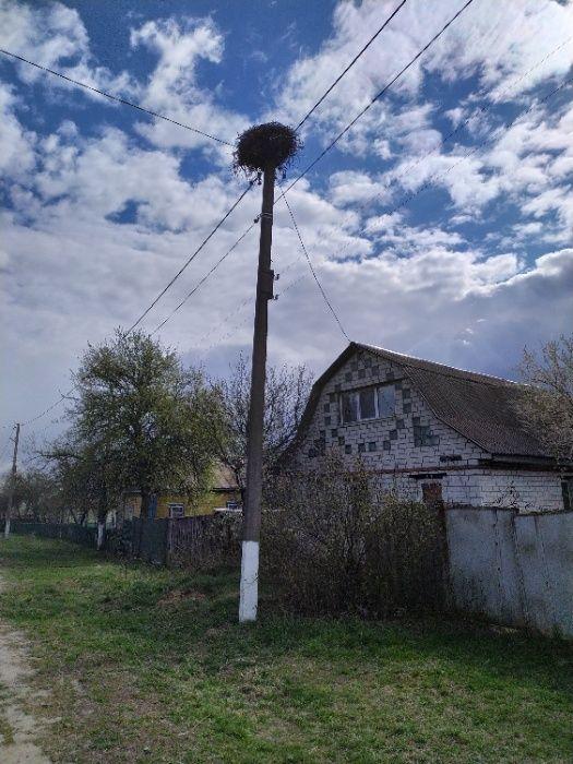 Дом в селе Сядрино Сядрино - изображение 1