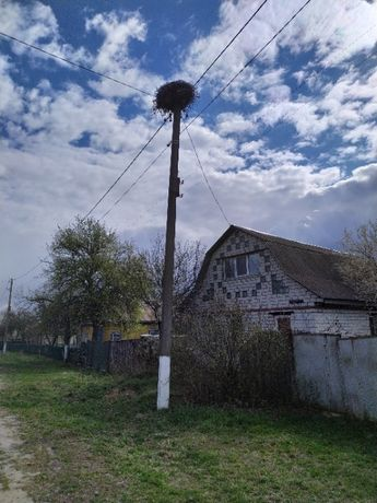 Дом в селе Сядрино
