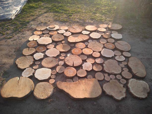 Plastry drewna różne gatunki