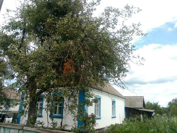 Продам Будинок в смт Лугини