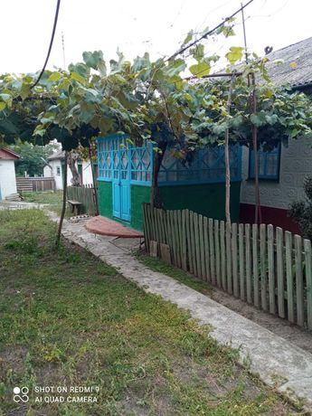 Продається  дім  (Хата) в с. Четвертинівка