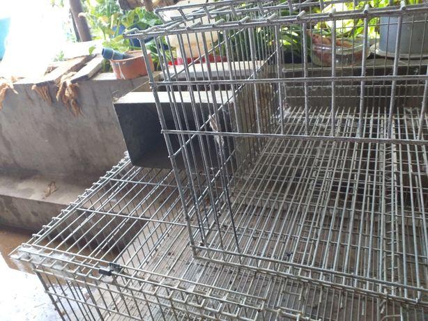 3.5 metros  de casas para criação  de coelhos promoção até domingo