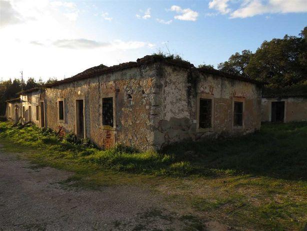 Vende-se terreno junto ao mercado de Santana - Rio Maior