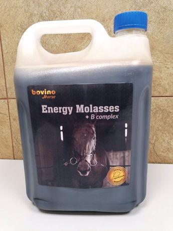 Melasa dla koni Energy Molasses + B Complex