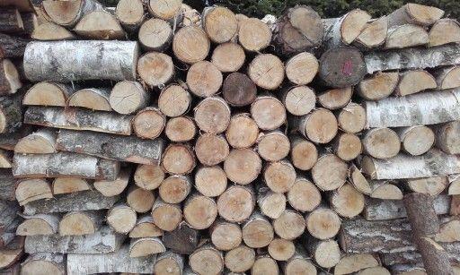 Drewno opałowe z brzozy, drewno kominkowe, brzoza