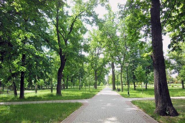 Парковая зона Бавария, Х. Гора коттеджная Улица