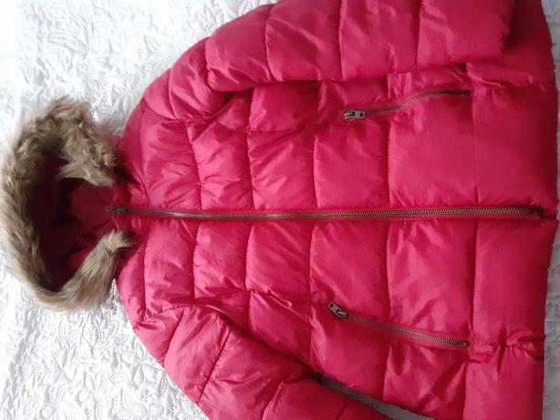 4 kurtki na jesień i zimę,wysyłka gratis.