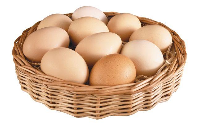 Куриное яйцо опт Куряче яйце продам