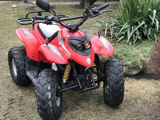 Quad MZ panther 50