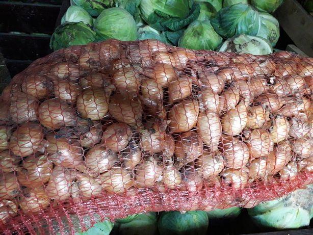 Продаю цибулю 1.5 грн. та інші овочі