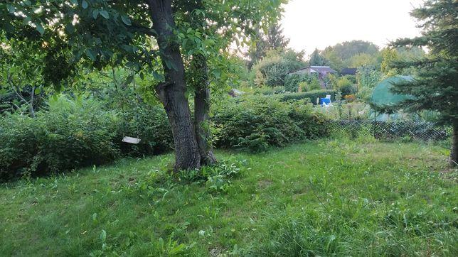 Działka rekreacyjna, ogródek działkowy, ROD