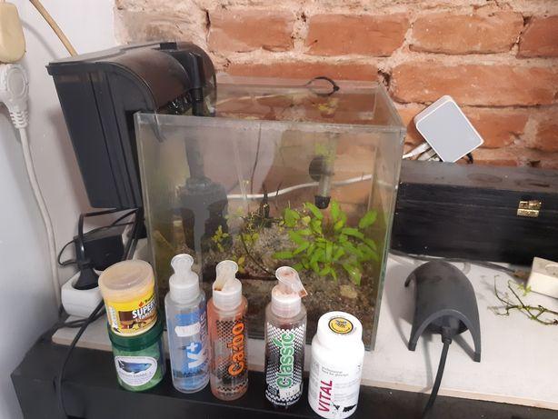 Akwarium kostka z wyposażeniem i krewetkami
