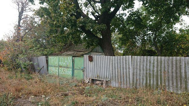 Дом с участком в селе