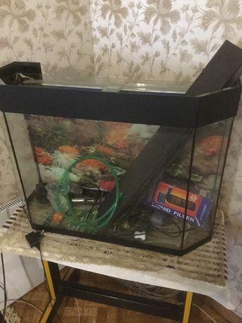 Продаю аквариум для рыб со всеми комплектующими