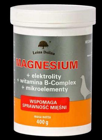 MAGNESIUM (400 g)-elektrolit