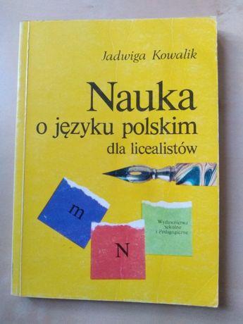 Nauka o języku polskim dla licealistów