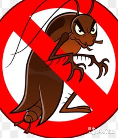 Уничтожение тараканов,клопов.