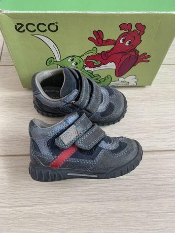Ботинки Ecco, Эко  для мальчика  20р.