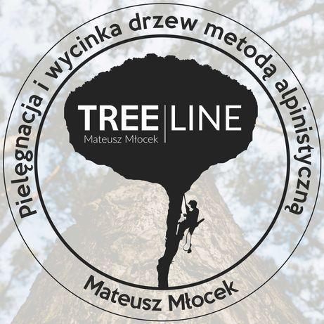 Wycinka drzew, Pielęgnacja drzew i ogrodów, Usługi rębakiem