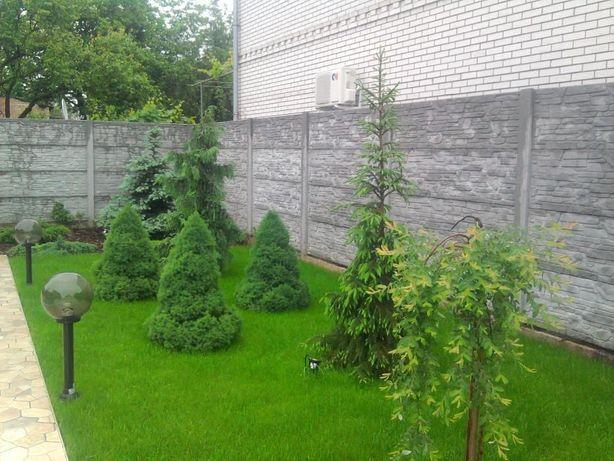 рулонный газон посевной газон автоматический полив капельный полив