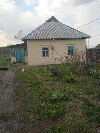 Продаю дом в с. Хоцки Переяслав-Хмельницкий р-н