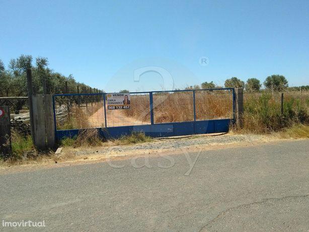 Terreno Rústico  Venda em São João de Negrilhos,Aljustrel
