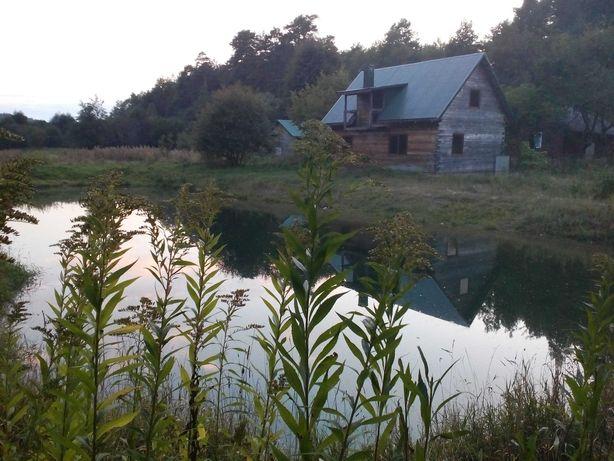 Оренда будинку в хвойному лісі