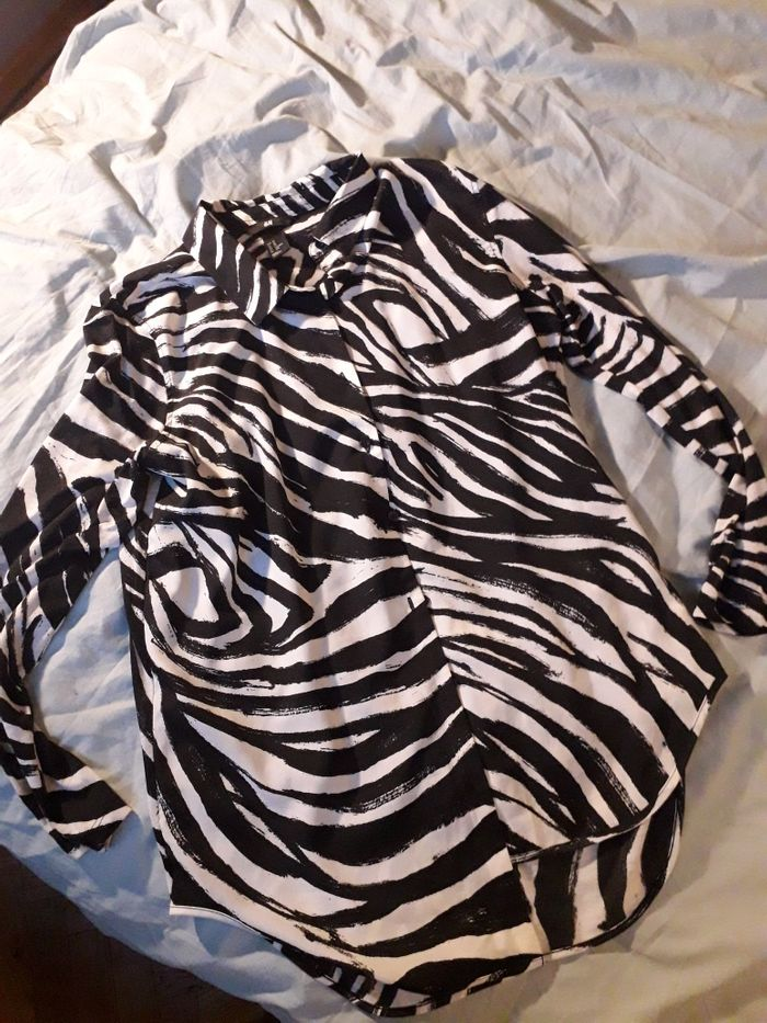 Koszula zebra H&M Wilkowyja - image 1