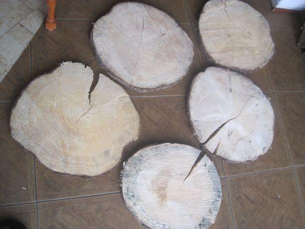 plaster krążki drzewa drewna 45 - 50 cm plastry drewniane z pęknięciem