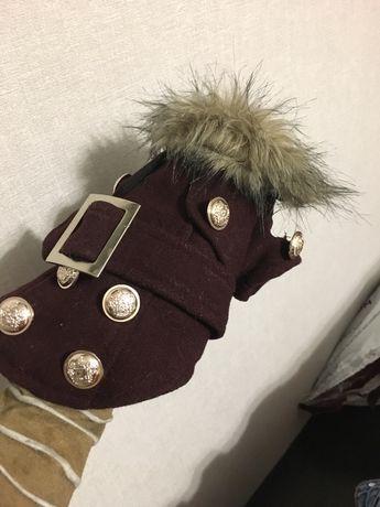 Пальто для собак