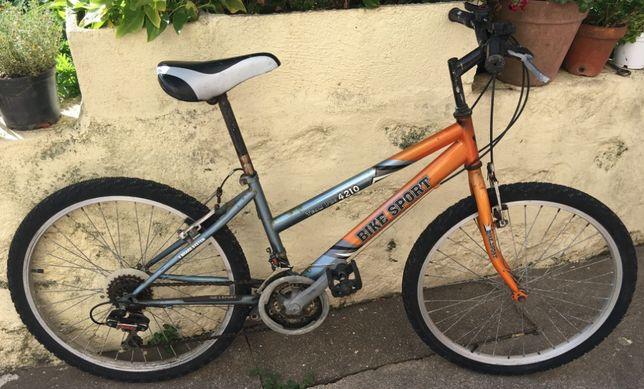 Bicicleta Bike Sport Team Pro 4210