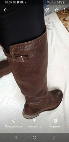 Сапоги, ботфорты,  ботинки