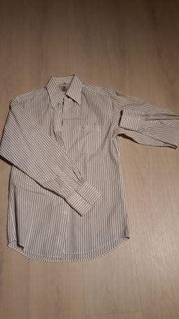 Koszule męskie z długim i krótkim rękawem