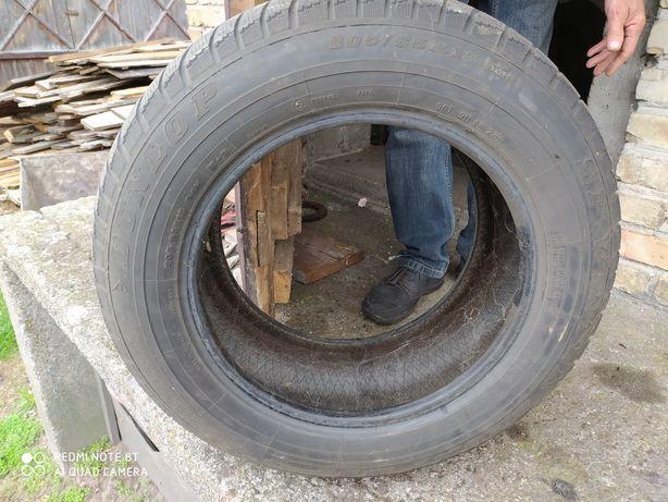 Opony zimowe Dunlop 205/65R15
