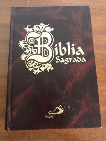 Vendo Biblia sagrada