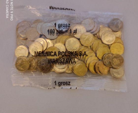 monety-1 grosz 2020 r-woreczek menniczy