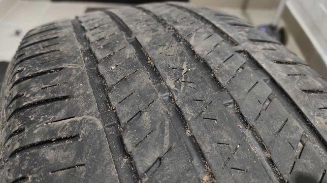 Шина Bridgestone Ecopia 225/55/R19