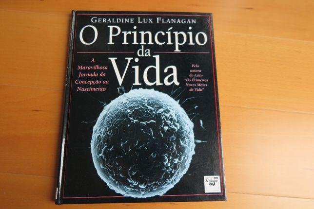 O Princípio da Vida de Geraldine Lux Flanagan