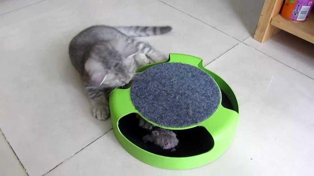 Когтеточка с игрушкой для кошек Сatch the mouse