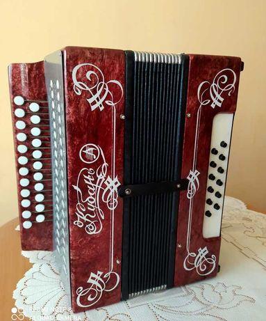 "Akordeon - stylowa harmonia ""Kubań""."