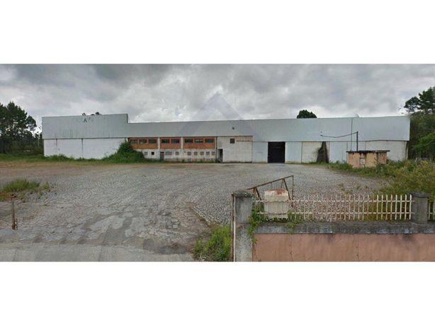 Pavilhão Industrial - Anadia