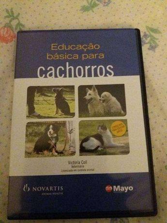 Educação básica para cachorros - DVD novo