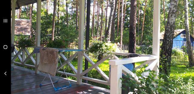Сдам новый дом в лесу.