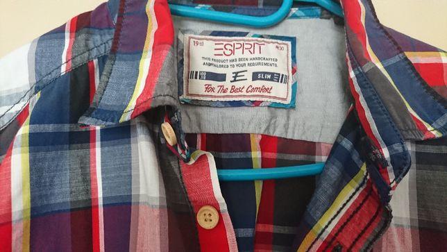 Esprit Nowa Koszula męska , krata , czerwono- niebieska